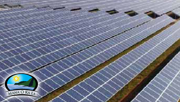 Solar PV Farm Panels